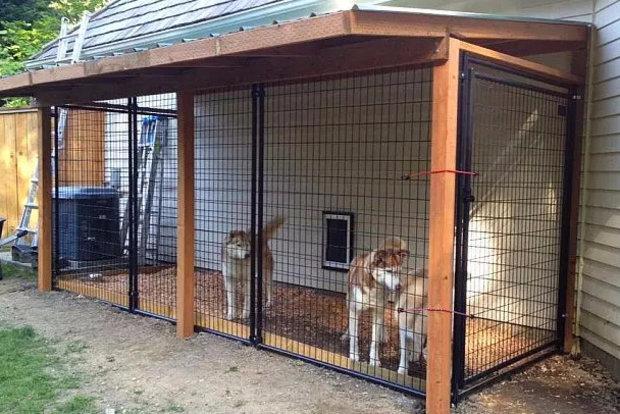 деревянные вольеры для собак своими руками
