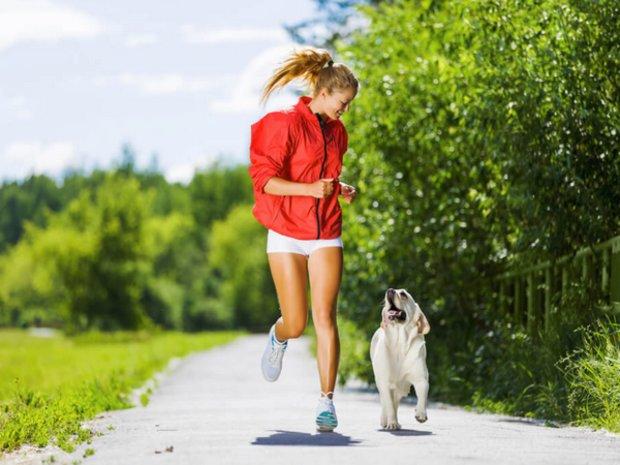 Пробежки с собакой