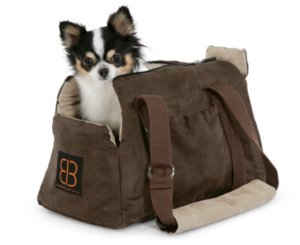 8a84766ee44f Как правильно выбрать сумку-переноску для собак: основные правила и ...