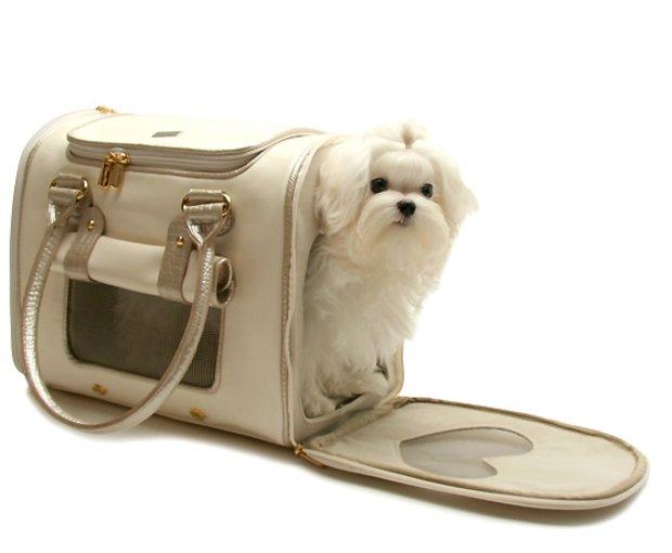 a67584dead0b Как правильно выбрать сумку-переноску для собак: основные правила и ...