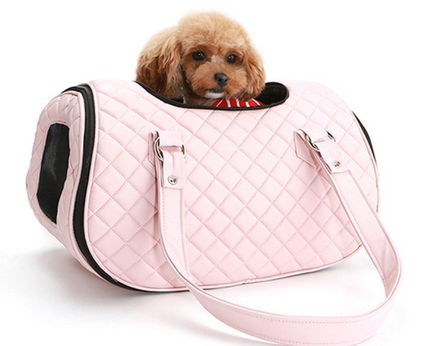 Картинки сумки для собак