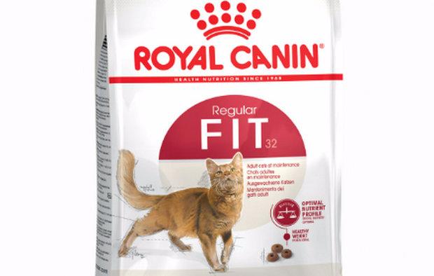 «Роял Канин» (Royal Canin) для котов и кошек: описание и виды премиум корма
