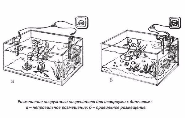 Что нужно для аквариума в картинках