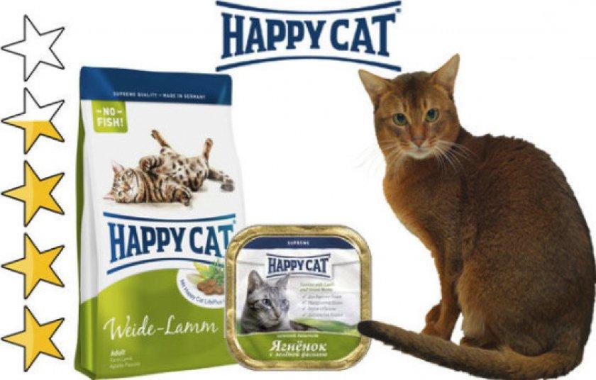 О торговой марке «Happy Cat»