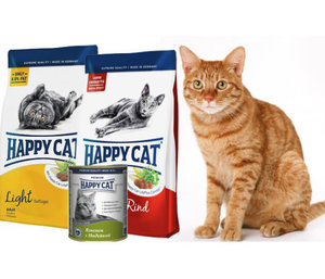 Все о корме для кошек «Happy Cat» («Хэппи Кэт»)
