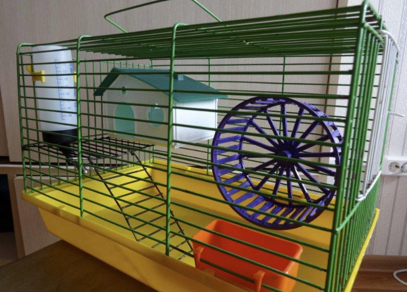 Клетка и колесо для хомяка