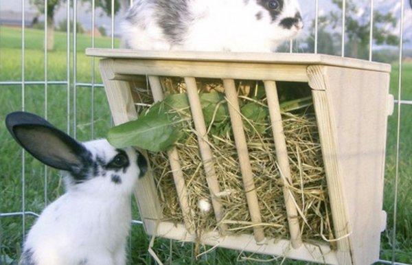 Кормушки для кроликов из консервных банок