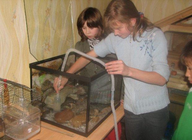Сифон для уборки аквариума