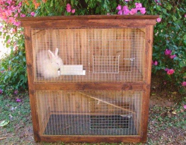 Как построить клетку для домашнего кролика своими руками 2