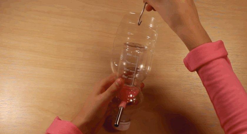 Поилка для хомяка в пластиковой бутылке