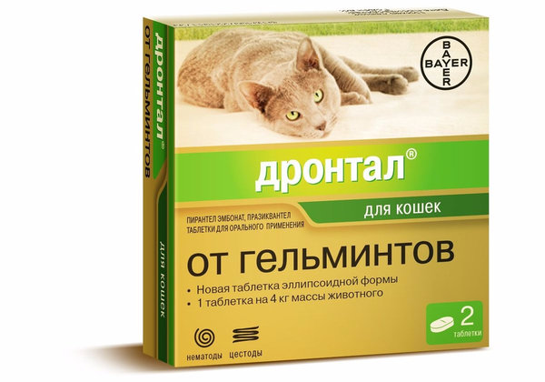Дронтал аналоги для кошек - Про паразитов