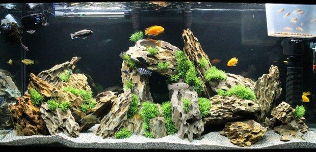 Пещера для рыб в аквариуме