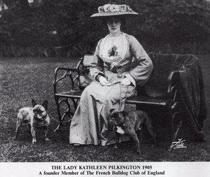 Леди Кетлин Пилкингтон, Клуб французских бульдогов, Англия, 1905 год