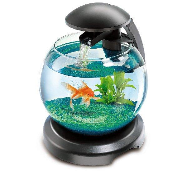 Крышка для аквариума своими руками (с подсветкой и без): нужна ли, из чего лучше сделать (пвх, пластика, стекла, ламината, фанеры, дсп)