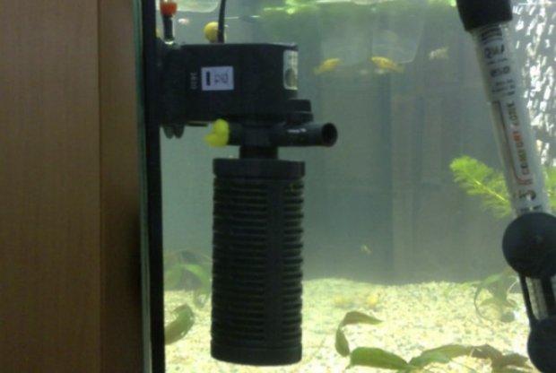 Внутренняя помпа в аквариуме