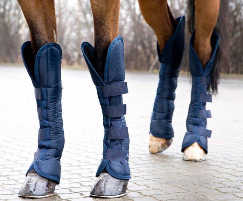 Транспортировочные ногавки для лошадей
