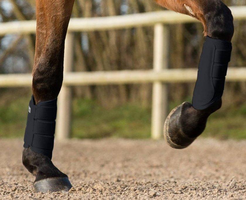 Противоударные ногавки для лошадей