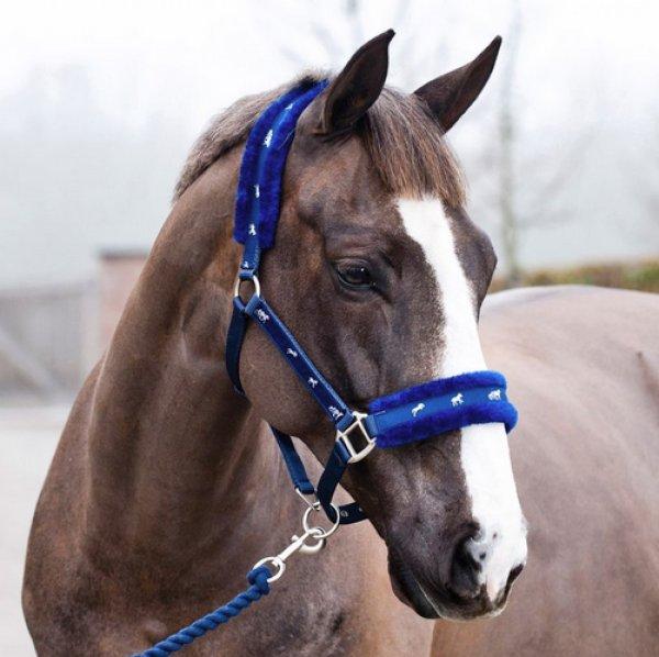 Уздечка и недоуздок для лошади как сшить своими руками
