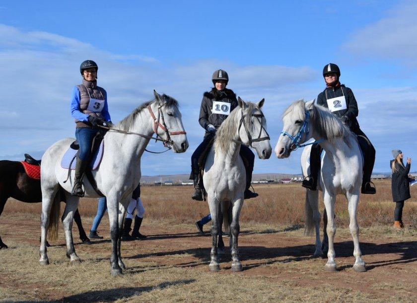 Дистанционные конные пробеги