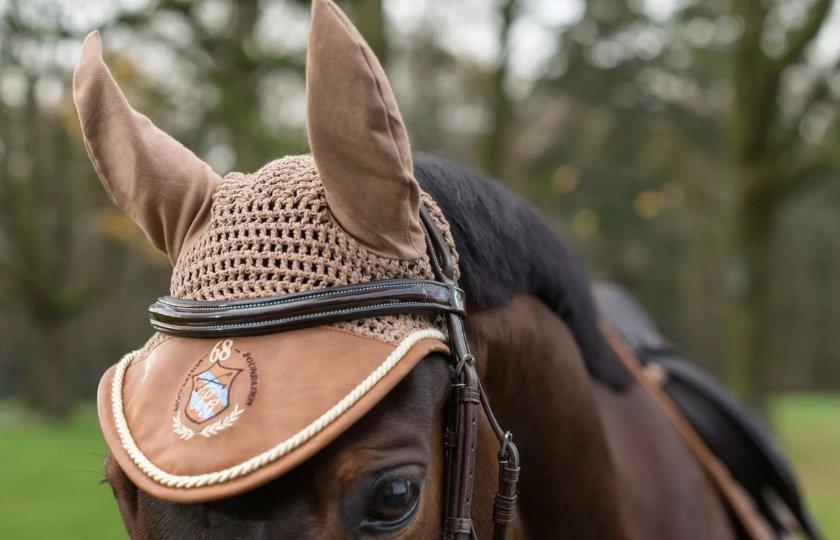 Ушки для лошади картинки