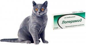 «Лоперамид» для котов