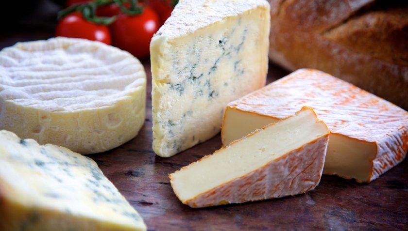 Выбор сыра для хомяка