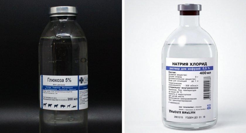 Препараты для лечения хомяка