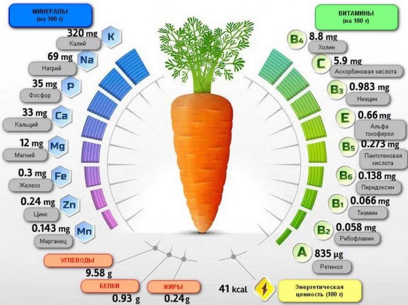 Витаминный состав моркови