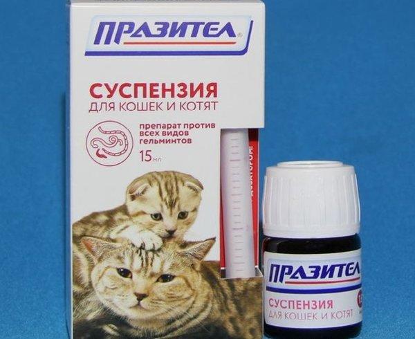 Суспензия от глистов для кошек празител