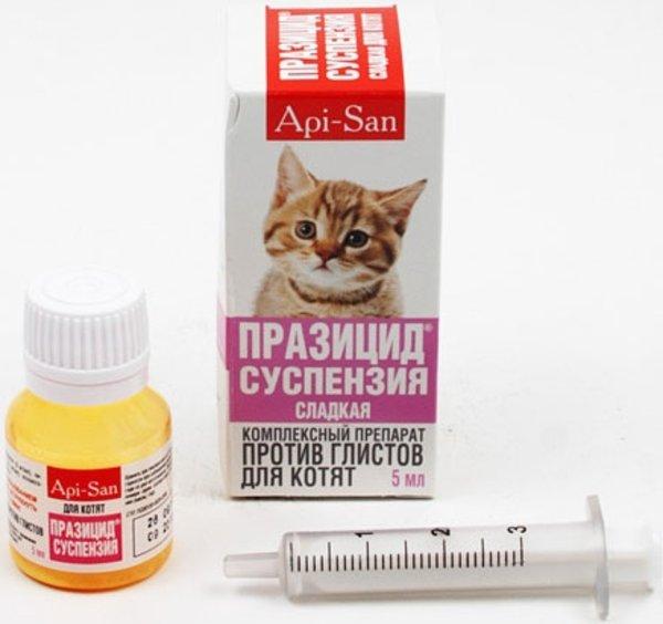 Празицид Суспензия Плюс для собак и кошек: инструкция по применению