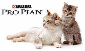 Линейка кормов для кошек Проплан от Пурина