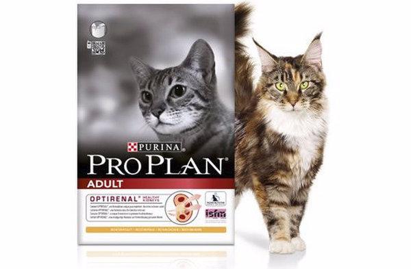 Влажный корм проплан для чувствительного пищеварения для кошек