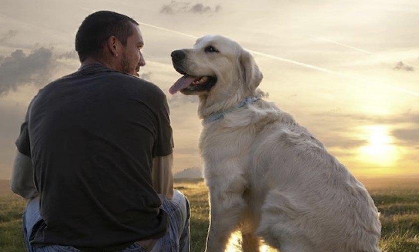 Пес и его хозяин