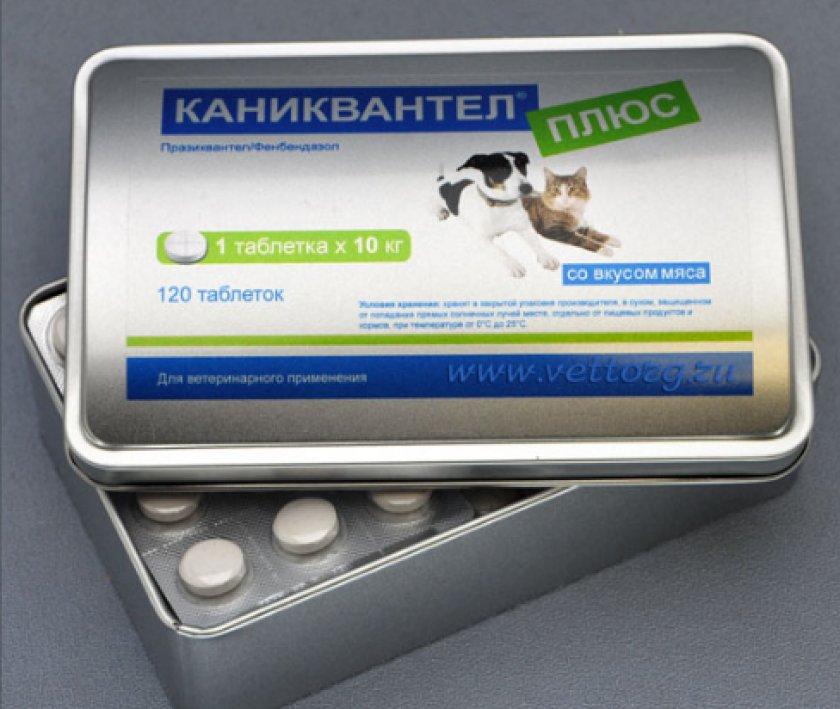 Медикаменты от глистов