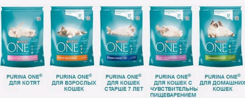 Товарная линейка для кошек и котов Purina