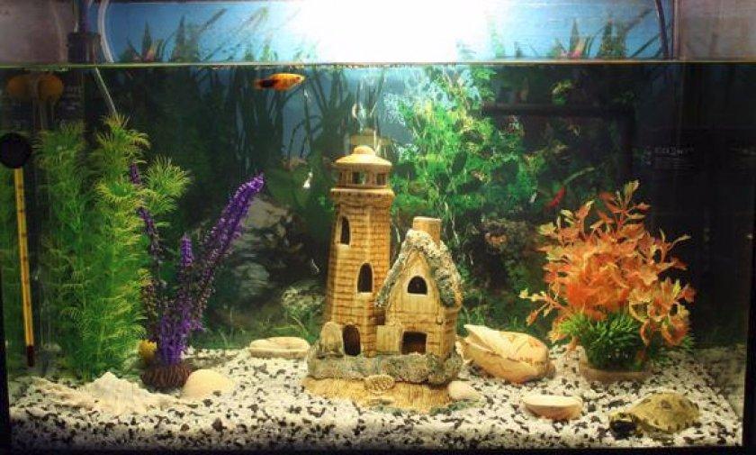 Оборудуем домик для рыб